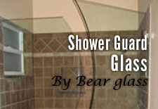 Shower Guard Glass